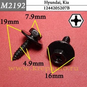 1244205207B - Автокрепеж для Hyundai, Kia